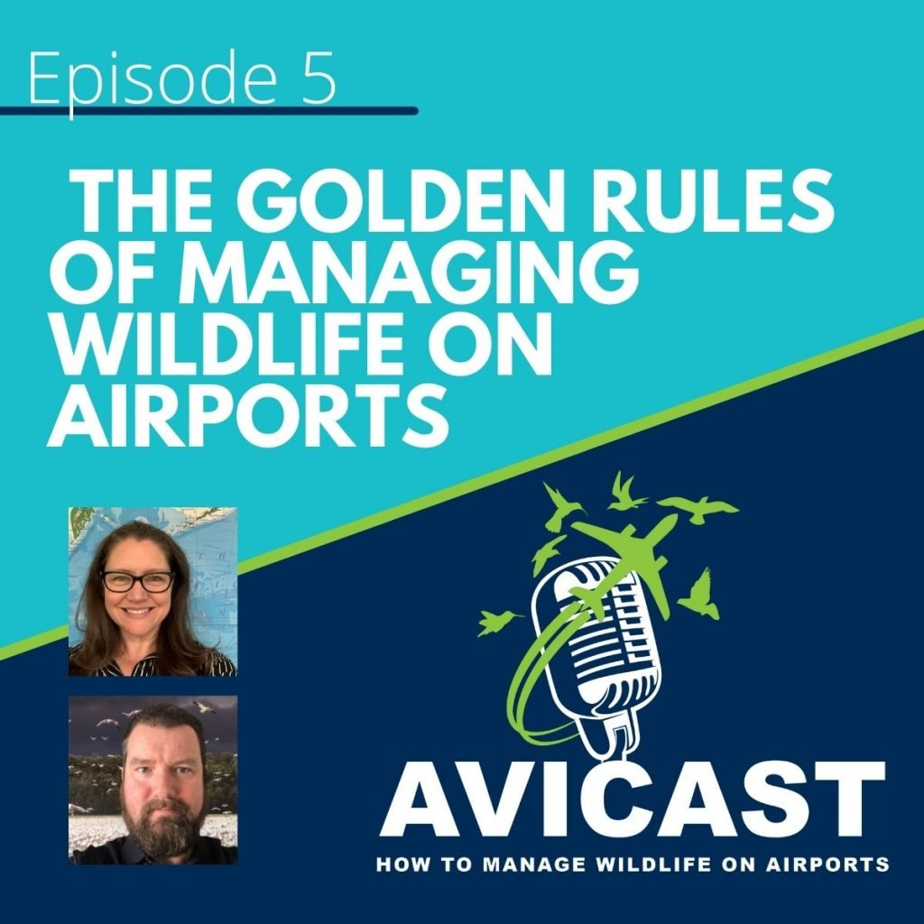 The Golden Rules of managing wildlife on airports